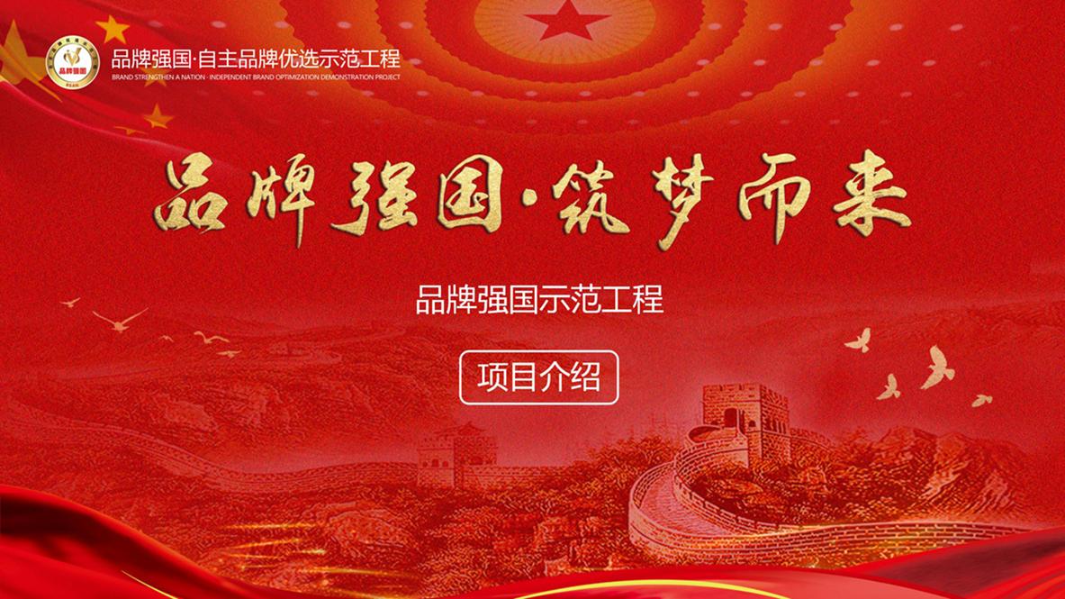 品牌强国示范工程2020-06-20_01.jpg
